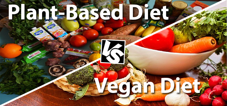 Plant-Based and Vegan Diet